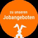 Jobangebote bei Hasenöhrl